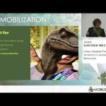 Android Talks at Mobilization 2017