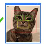 Microsoft brings feline facial recognition to pet doors with Windows 10 IoT Core